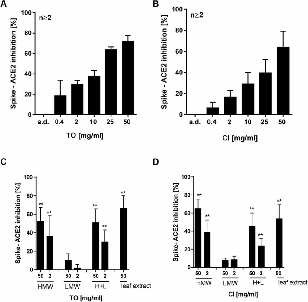 Effect of T. officinale on Sars-CoV-2-Spike – ACE 2 inhibition.