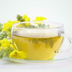 Mullein Flowers Tea