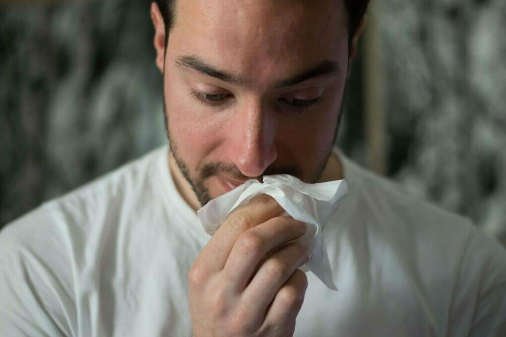 black seed oil cold flu